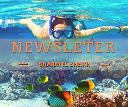 newsletter sharm